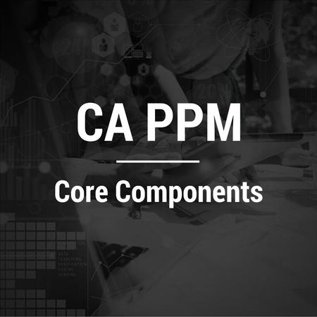 CA PPM-Core Components