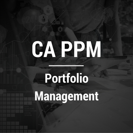 CA PPM-Portfolio Management