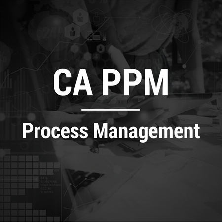 CA PPM-Process Management